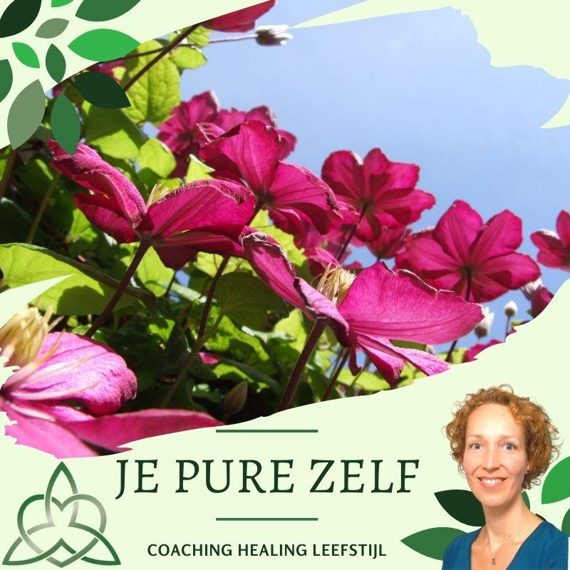 Aromatherapie Alkmaar